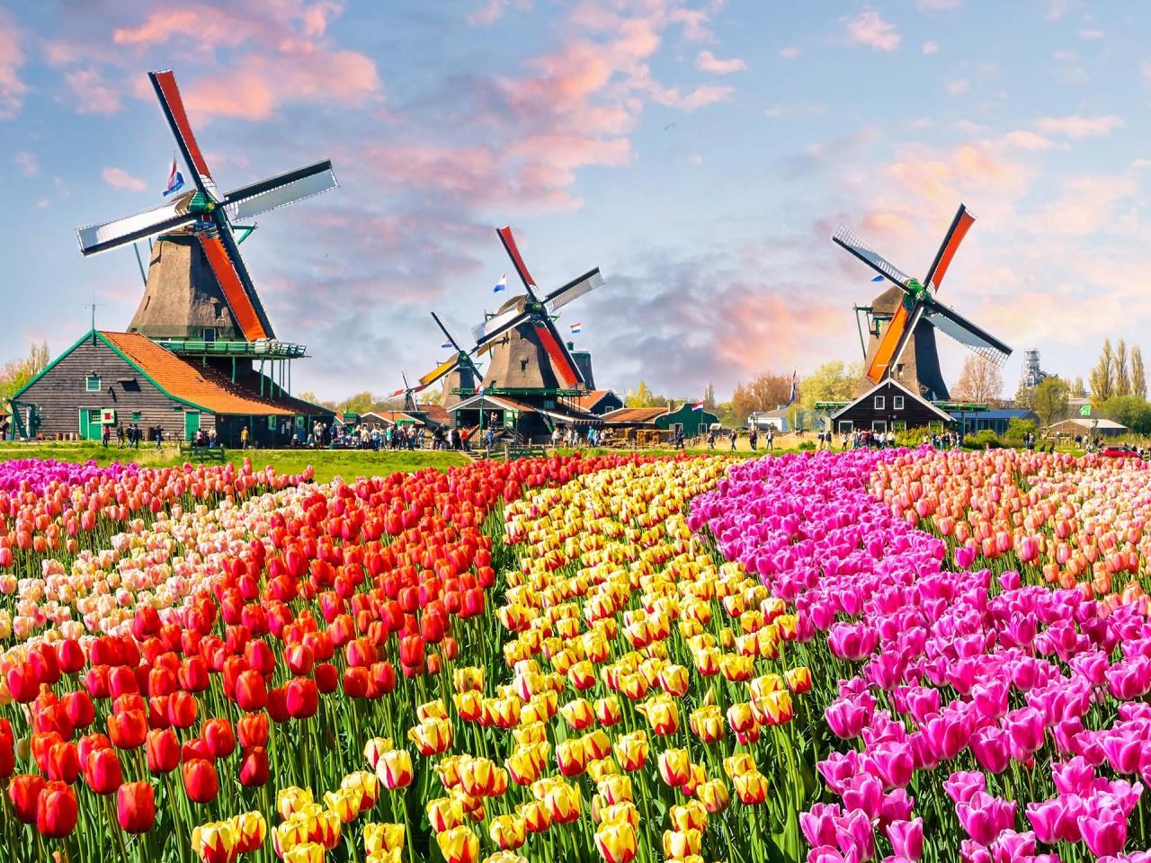 Pasqua ad Amsterdam