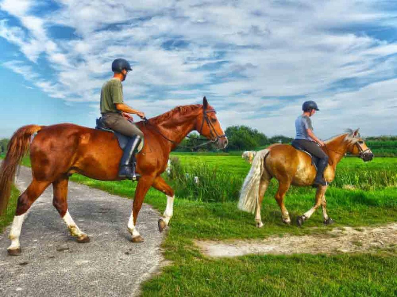 ECO-TURISMO: A cavallo nel Parco del Cilento!