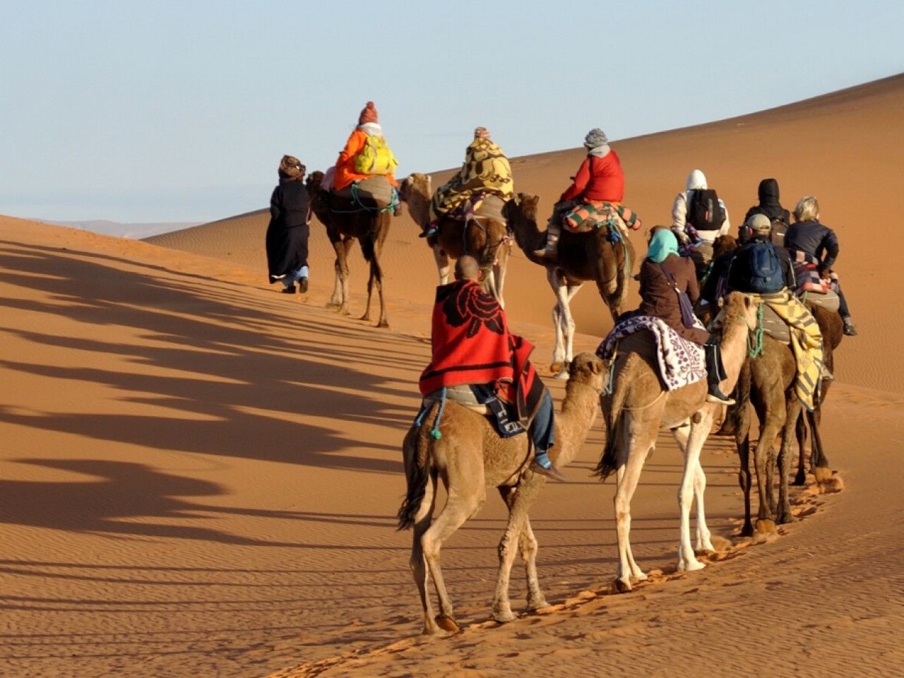 Sharm: Camel or Horse Riding (2 hrs)