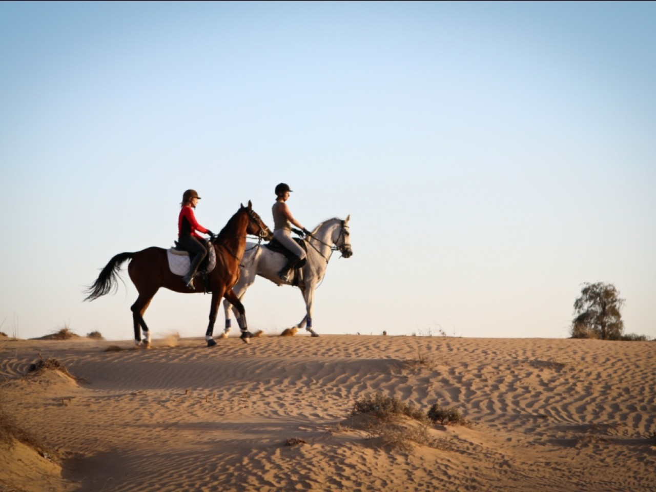 Hurghada: Camel or Horse Riding (2hrs)