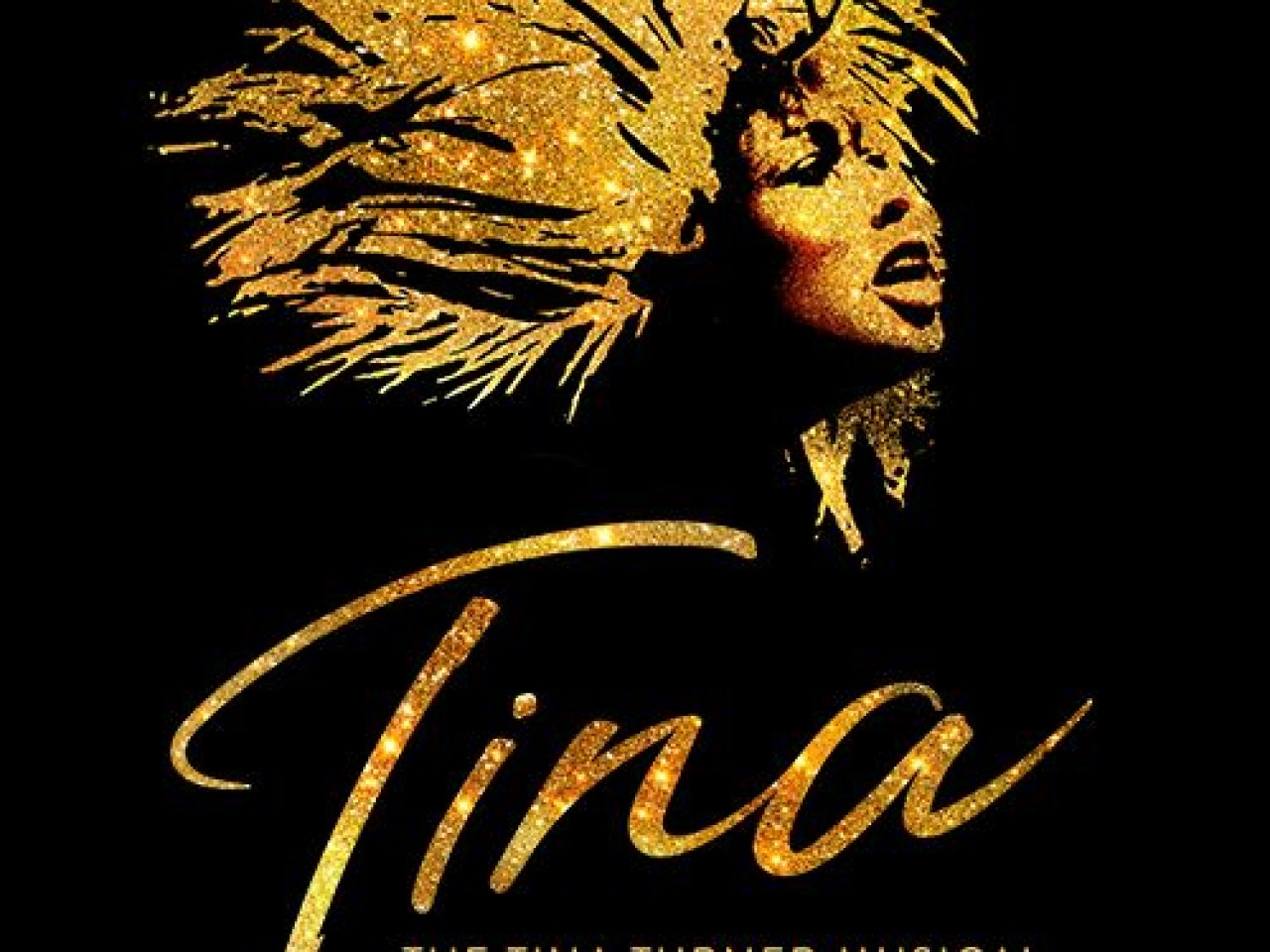 Tina Turner The Musical Ticket & 2-Nights Hotel