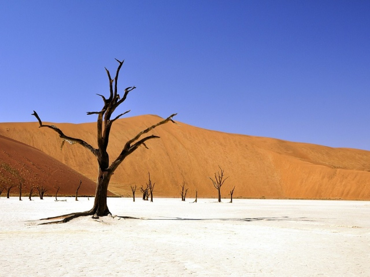 IN NAMIBIA CON ENZA